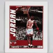 Chicago Bulls Michael Jordan Signed 16x20 Photo