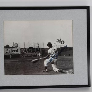 """1946 Boston Red Sox Ted Williams Signed 15"""" x 12"""". B&W Photo Disply"""