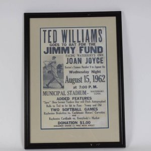 Boston Red Sox - Ted Williams Jimmy Fund Poster 18x25 Display