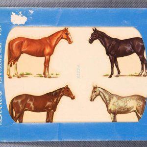 Horse Decals In Original Packaging