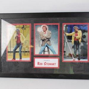 ROD STEWART autographed 8x10 color photo ROCK AND ROLL LEGEND Dispay Signature Grades 9-10