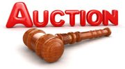auctionlogo