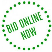 auctiononline